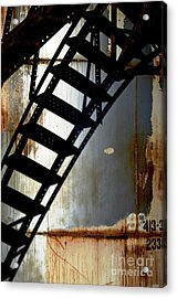 Catwalk II Acrylic Print by Sherry Davis