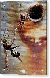 #caught Acrylic Print