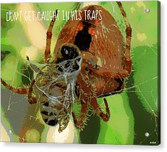 Caught Acrylic Print by Heidi Manly