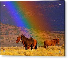 Caught In A Rainbow  Acrylic Print by Jeanne  Bencich-Nations