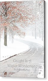 Caught In A Winter Wonderland Acrylic Print