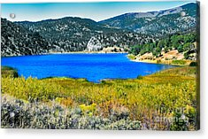 Cave Lake Acrylic Print by Robert Bales