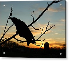 Cawcaw Over Sunset Silhouette Art Acrylic Print