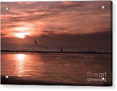 Cayucos Beach With Seagulls Acrylic Print