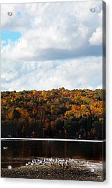 Acrylic Print featuring the photograph Cayuga Lake In Colorful Fall Ithaca New York  by Paul Ge
