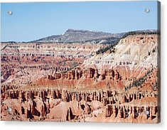 Cedar Breaks Up Close 3 Acrylic Print