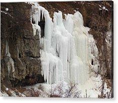 Acrylic Print featuring the photograph Cedar Canyon Ice Falls   by Deborah Moen