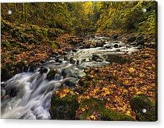 Cedar Creek 2 Acrylic Print