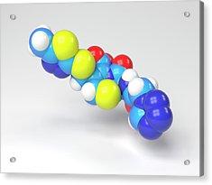 Cefazolin Molecule Acrylic Print by Indigo Molecular Images