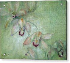 Celadon Cymbidiums Acrylic Print by Susan Hanlon