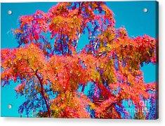 Celebrate Autumn Acrylic Print by Ann Johndro-Collins