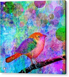 Celebrate Acrylic Print by Robin Mead