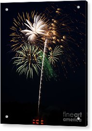Acrylic Print featuring the photograph Celebration by Dale Nelson