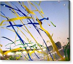 Celebration Acrylic Print by Jon Berry OsoPorto