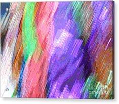 Celeritas 15 Acrylic Print