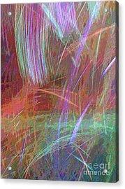 Celeritas 29 Acrylic Print