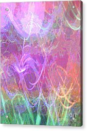Celeritas 33 Acrylic Print