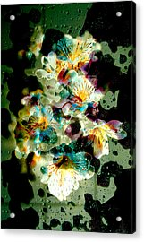 Celestial Flowers Acrylic Print by Loriental Photography
