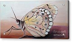 Celine's Butterfly Acrylic Print