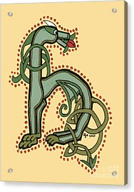 Celtic Dragon Manuscript H Acrylic Print