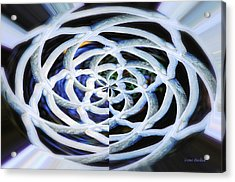Celtic Knot Acrylic Print by Donna Blackhall