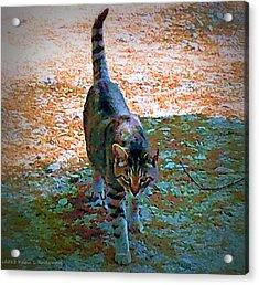 Cemetery Cat Acrylic Print