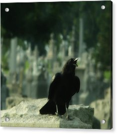 Cemetery Corvidae As It Caws Acrylic Print by Gothicrow Images