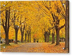 Cemetery In Autumn Acrylic Print by Gail Maloney
