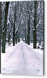 Cemetery In Snow Acrylic Print by Gail Maloney