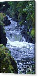 Acrylic Print featuring the photograph Cenarth Falls by John Williams