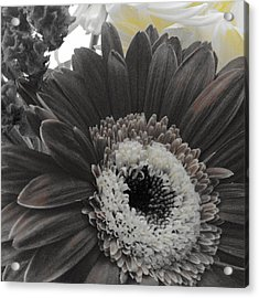 Centerpiece Acrylic Print by Photographic Arts And Design Studio