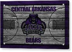 Central Arkansas Bears Acrylic Print by Joe Hamilton