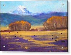 Central Oregon Acrylic Print by Nancy Merkle