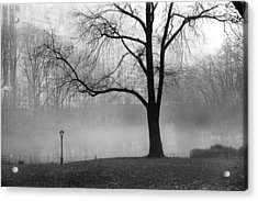 Acrylic Print featuring the photograph Central Park Fog by Dave Beckerman