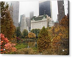Central Park Acrylic Print by June Marie Sobrito
