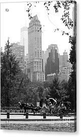 Central Park Acrylic Print by Kristi Jacobsen
