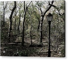 Central Park Lamppost Acrylic Print