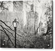 Central Park Lamppost In New York City Acrylic Print by Lisa Russo