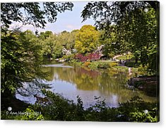 Acrylic Print featuring the photograph Central Park Landscape by Ann Murphy