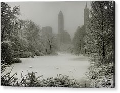 Acrylic Print featuring the photograph Central Park Snowstorm by Chris Lord