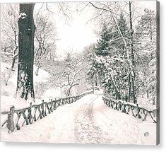Central Park Winter Landscape Acrylic Print by Vivienne Gucwa