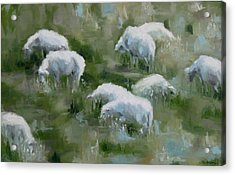 Cezanne Sheep Acrylic Print