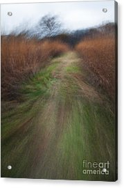 The Narrow Path - Cg10-000004 Acrylic Print