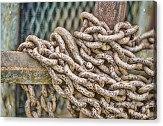Chained Up Acrylic Print by Heather Applegate