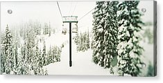Chair Lift And Snowy Evergreen Trees Acrylic Print by Panoramic Images