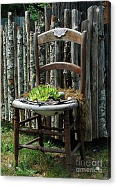 Acrylic Print featuring the photograph Chair Planter by Ron Roberts