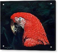 Chaka Acrylic Print