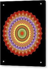 Chakra Spin Acrylic Print by Barbie Wagner