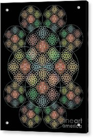 Chalice Cell Rings On Black Lt33 Acrylic Print