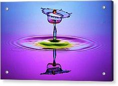 Chalice Colors Full Acrylic Print by Muhammad Berkati
